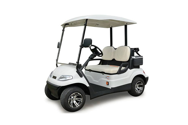 How to determine if you need to replace a golf cart battery ?